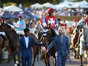 NZB Karaka Million | Track gallops