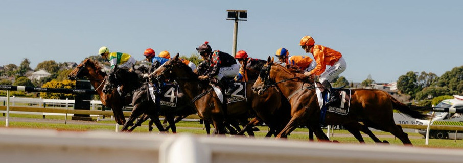 Horses racing at Ellerslie