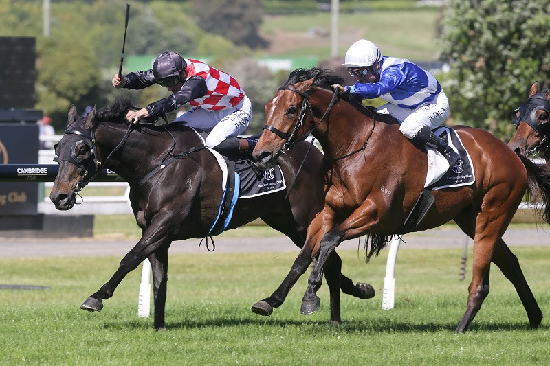 Gino Severini (outer) and The Mitigator battle out the finish of the Gr.3 Eagle Technology Stakes (1600m) | Photo Credit: Trish Dunell