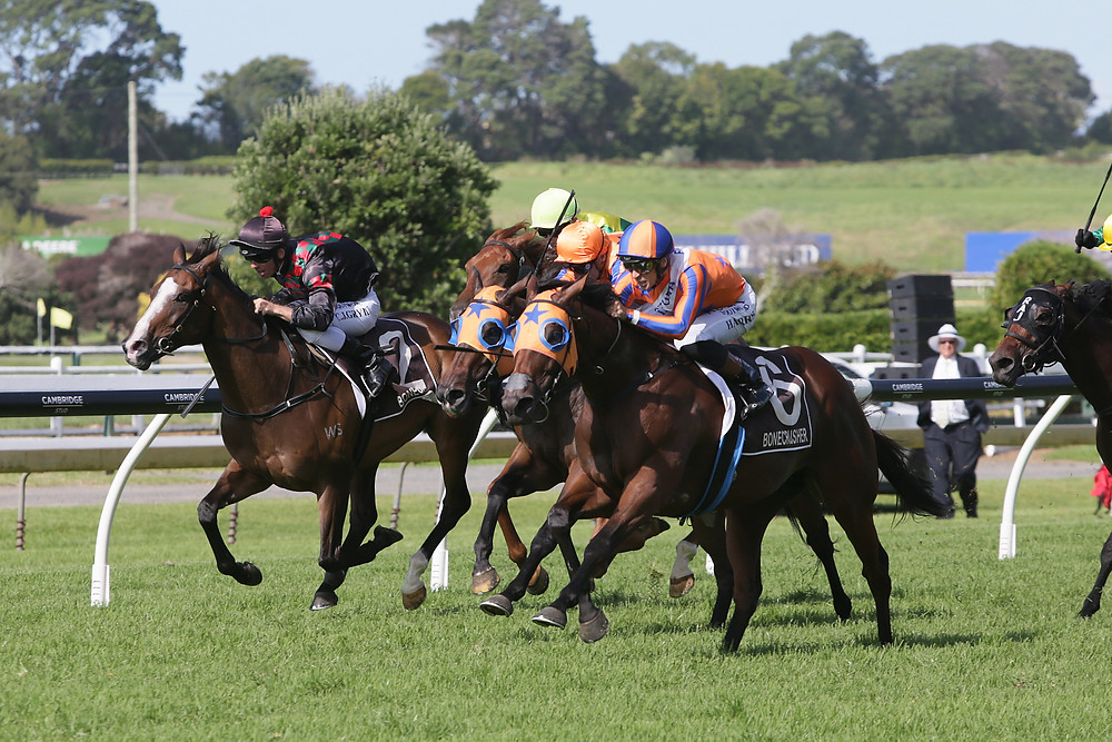 Rocket Spade (inner) masters Milford and Frontman (obscured, middle) to win the Group I $1,000,000 Vodafone New Zealand Derby (2400m) | Photo: Race Images - Kenton Wright