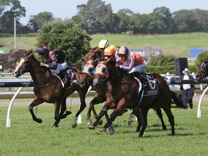 Melody Belle sets Group 1 record here at Ellerslie