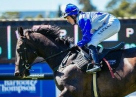 TRACKCHAT | Spring Raceday | 26 Sep 2020