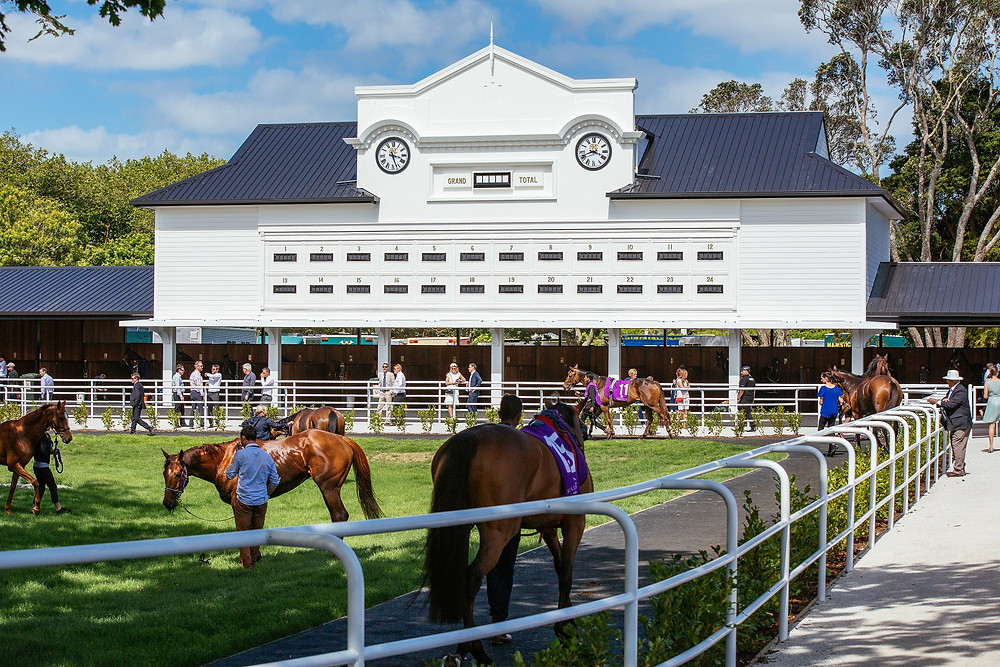 Auckland Racing Club's stabling complex