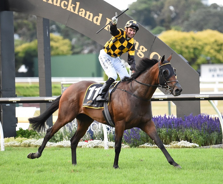 Probabeel - the first ever winner of both the $1,000,000 Karaka Million for 2YOs and the $1,000,000 Karaka Classic for 3YOs