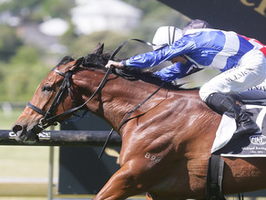 NEWS | Late burst secures Ellerslie feature for Gino Severini