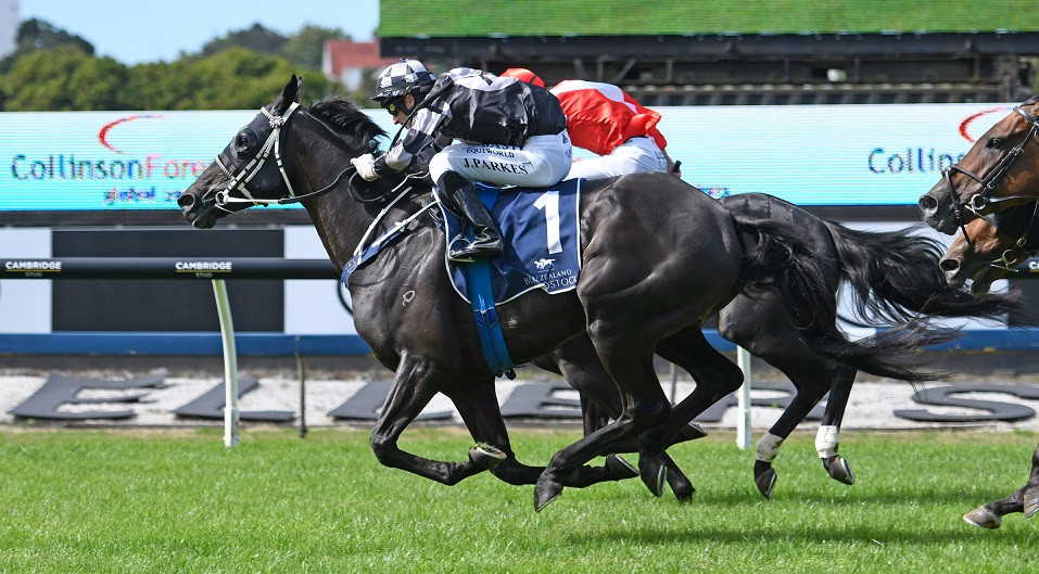Five To Midnight on the way to victory at the 2019 Karaka Million meeting
