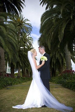 Our Avenue of Palms makes for a gorgeous backdrop to your wedding photos