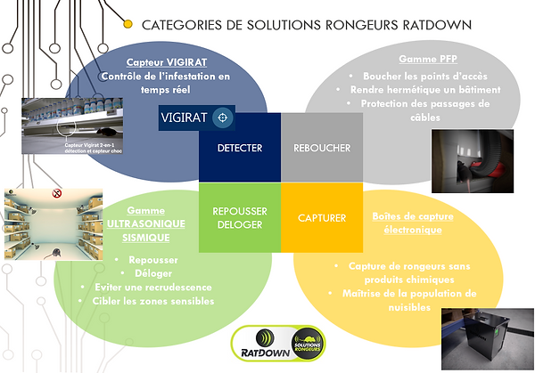 Processus de protection RATDOWN