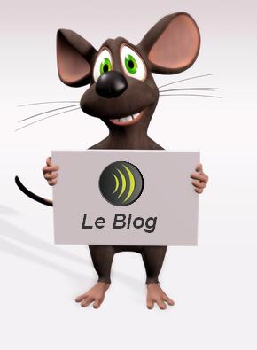 Bienvenue dans le RDBlog!