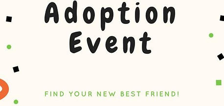 Adoption-Event-678x321.jpg