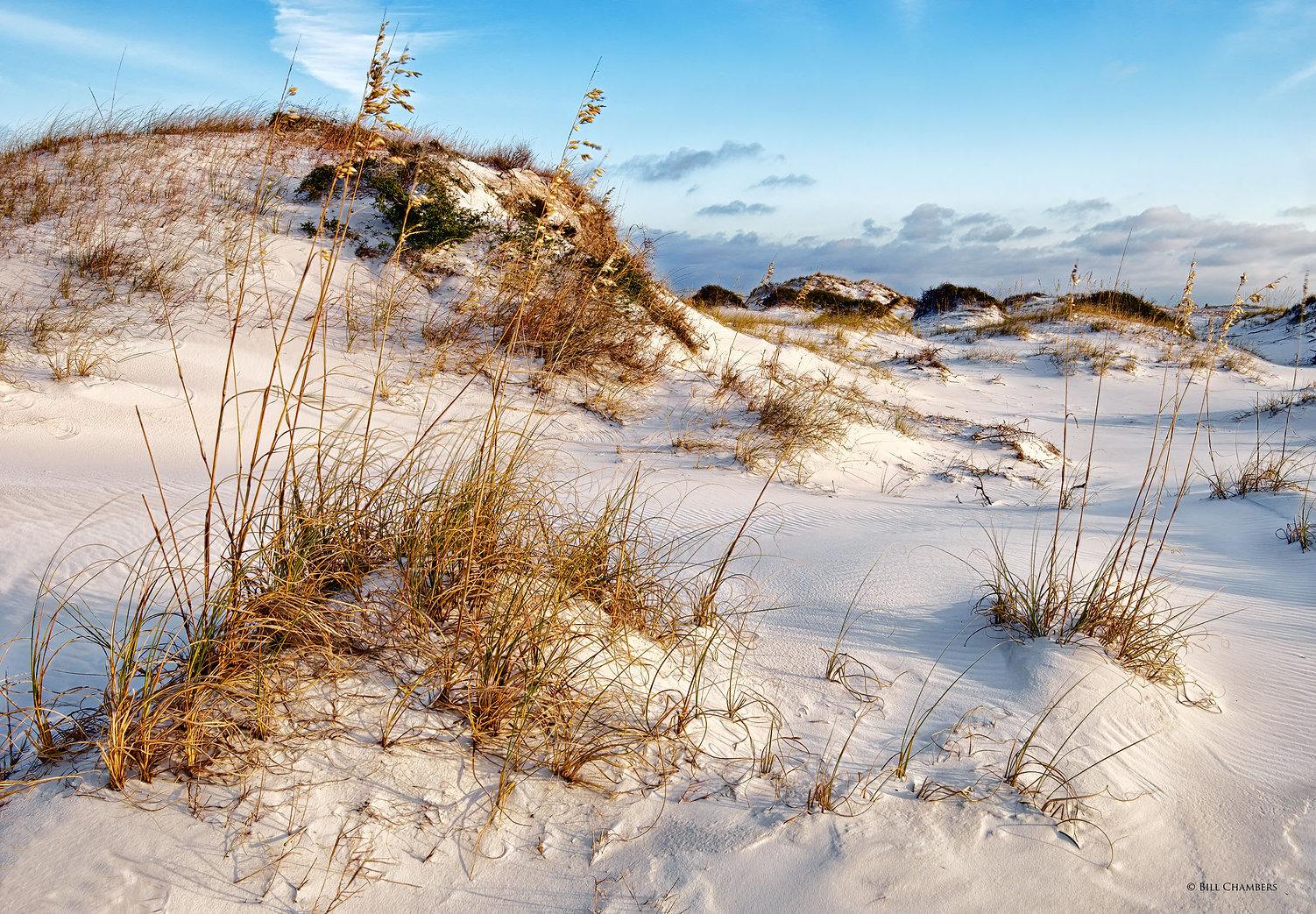 Lb61a - Sand Dune - ready - 2400.jpg