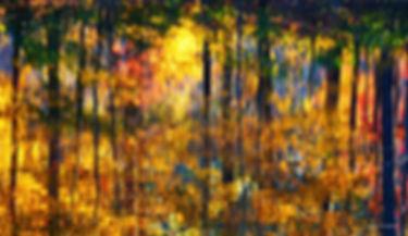 A48 - Autumn reflections 2-Edit - 2400.j