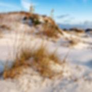 Lb61a - Sand Dune - ready - 300x300.jpg