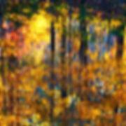 A48 - Autumn reflections 2-Edit - 300x30
