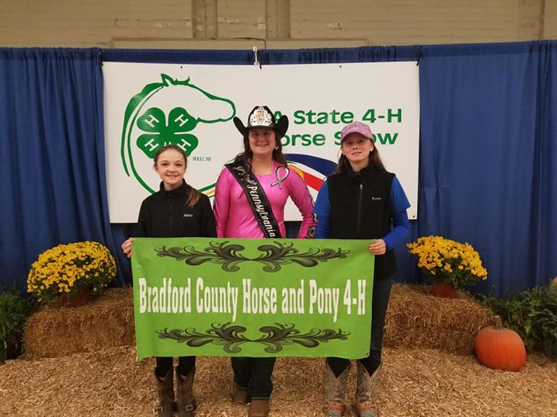 PA State 4-H Horse Show