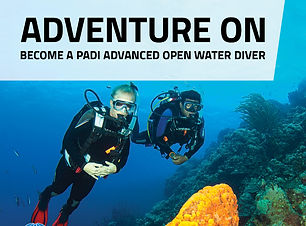 scuba tribe bai open wate get your padi usat liberty