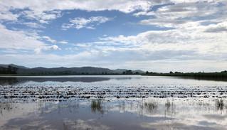 Lake Kynnumboon