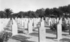 Photograph of the headstones in Plot 3 of Ma'Asker Al Raschid RAF Cemetery (formerly Hinaidi RAF Peace Cemetery)