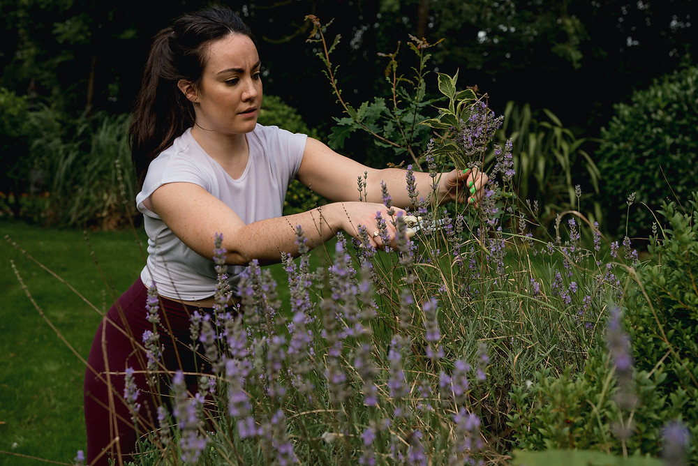 Finding lavender at Liverpool Personal Branding Photoshoot Wellness event