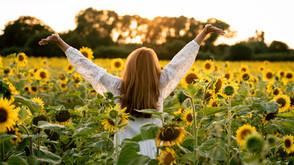 Sunflower-Filled Brand Photoshoot with Lancashire Health & Wellness Coach