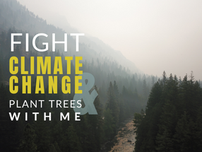 Fight Climate Change with Wild Kind Photography