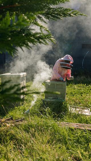 Beekeeper Personal Branding Shoot 8.jpg