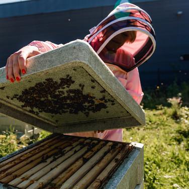 Beekeeper Personal Branding Shoot 7.jpg