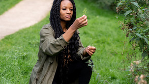 Sunset Forest Brand Photography Shoot with Liverpool Herbalist