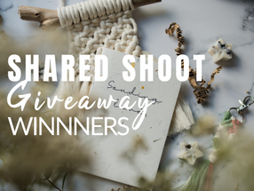 Gratitude Giveaway Shared Eco-Product Shoot