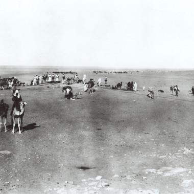 Viaggiatori europei su dromedari sostano nel deserto