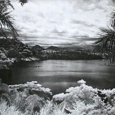 Il lago degli elefanti