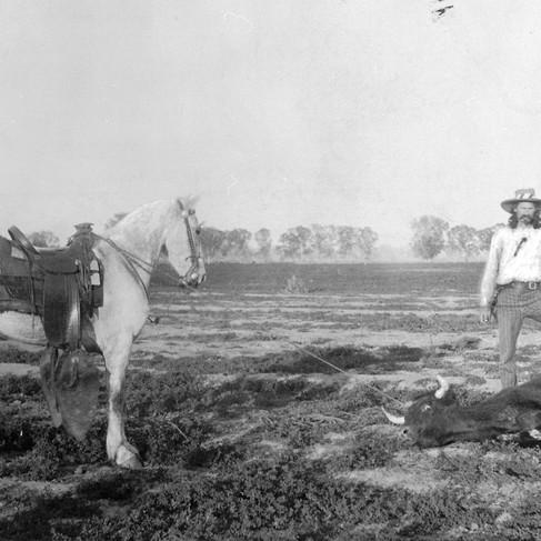 Ranch di allevamento di bestiame della Graham Company  Arizona ca. 1896/1897 Autore sconosciuto Courtesy National Archives