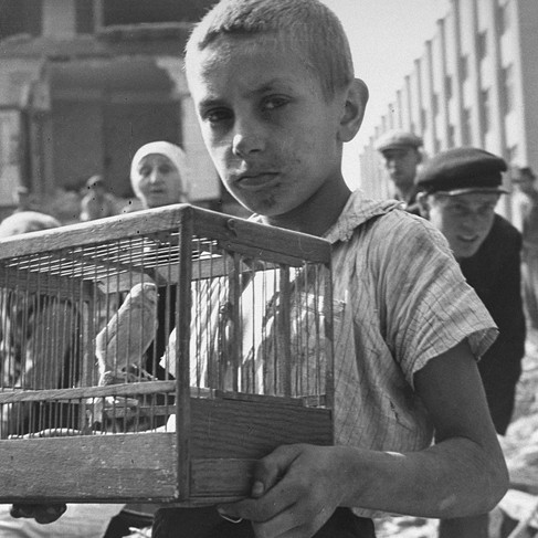 """""""A young boy, Zygmunt Askienow, holds the cage containing his pet canary that he rescued from the ruins of his family's home in Warsaw. Zygmunt survived the war.""""  September 1939 Warsaw, Poland Photo by Julien Bryan © United States Holocaust Memorial Museum, courtesy of Julien Bryan Archive"""