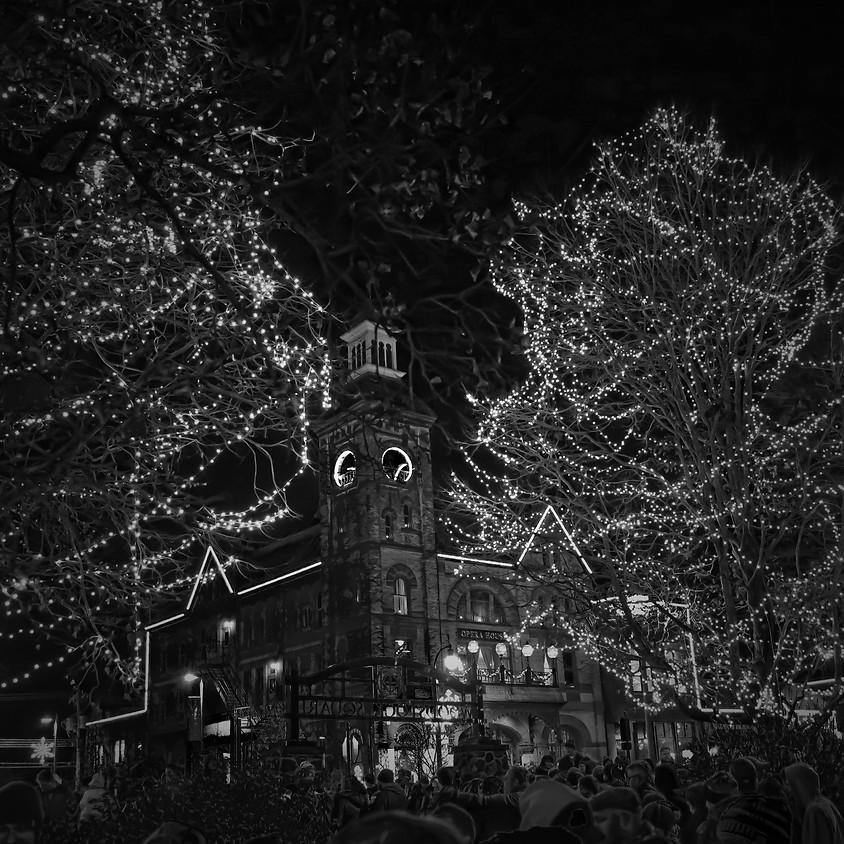 2018 - MINI SESSION - CITY ZOO LIGHTS
