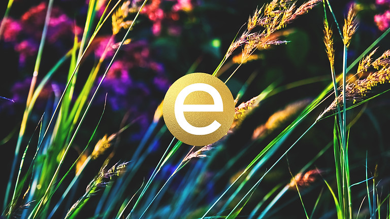 Emory Photography E-Gift Card