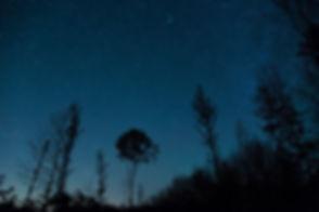 MeteorShower-3.jpg