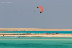 Kites in the sky, kite-safari