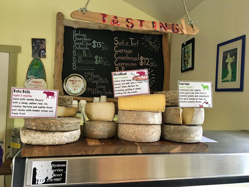 Artisan cheeses on display at Bohemian Creamery