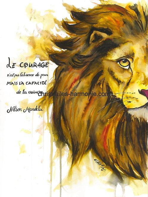 063 Lion marron
