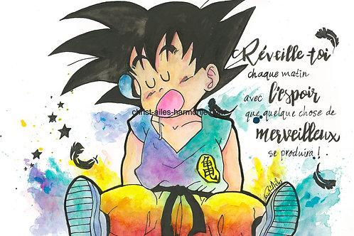 073 DragonBall multicolore citation