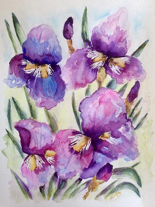 Aquarelle 055 Fleurs