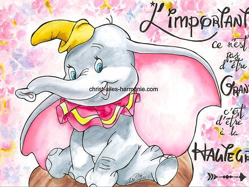 091 Dumbo citation grand