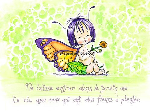 069 MH papillon asiatique citation