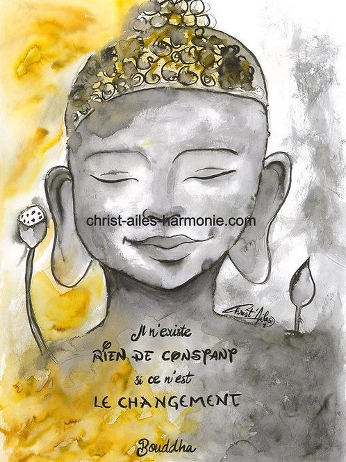 064 Bouddha citation changement