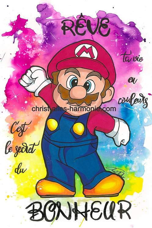 074 Mario multicolore citation