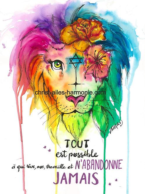 062 Lion couleur