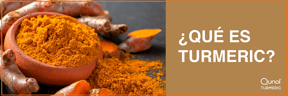 Qunol_What_Is_Turmeric copia.png