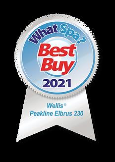 WhatSpa Best Buy Award 2021 Wellis Peakl