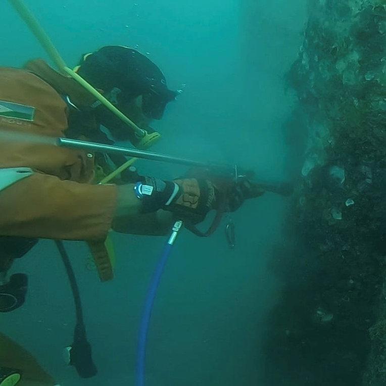 DiveWise2.jpg