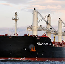 MV PETREL BULKER.jpg